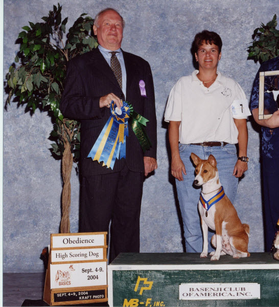 Basenji High In Trial