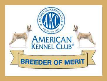 akc-breeder-of-merit