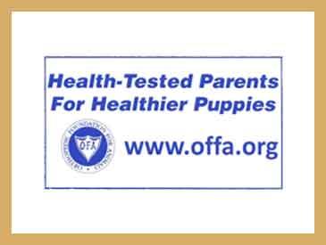 offa-health-testing